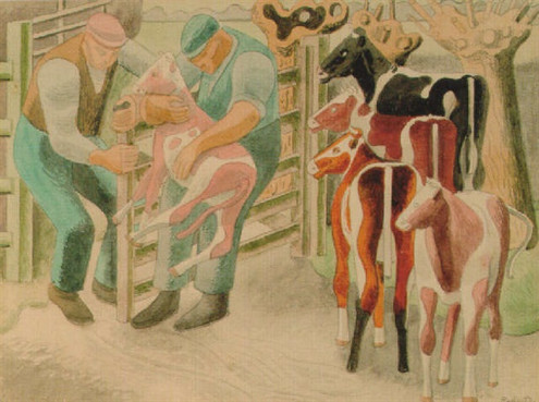 Inspecting the Calves